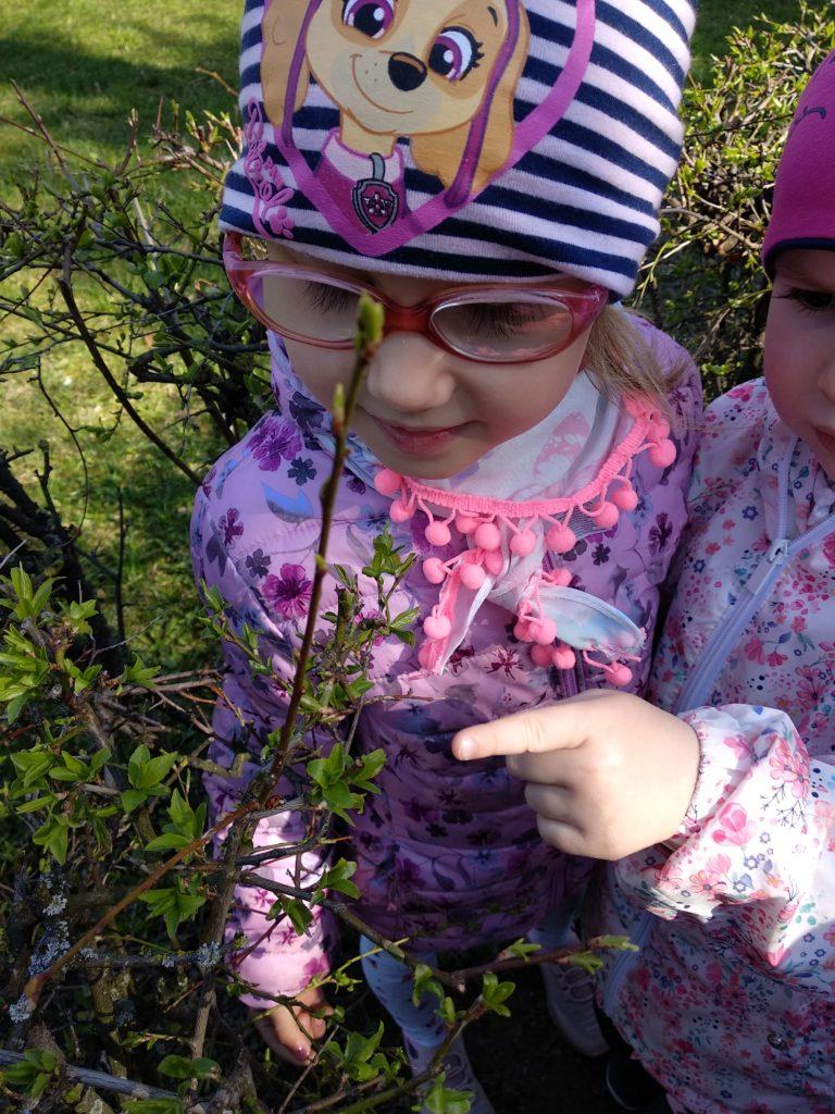 szukamy wiosny